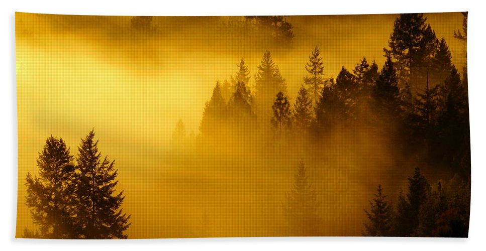 Nature Beach Towel featuring the photograph Misty Morning Sunrise by Ben Upham III