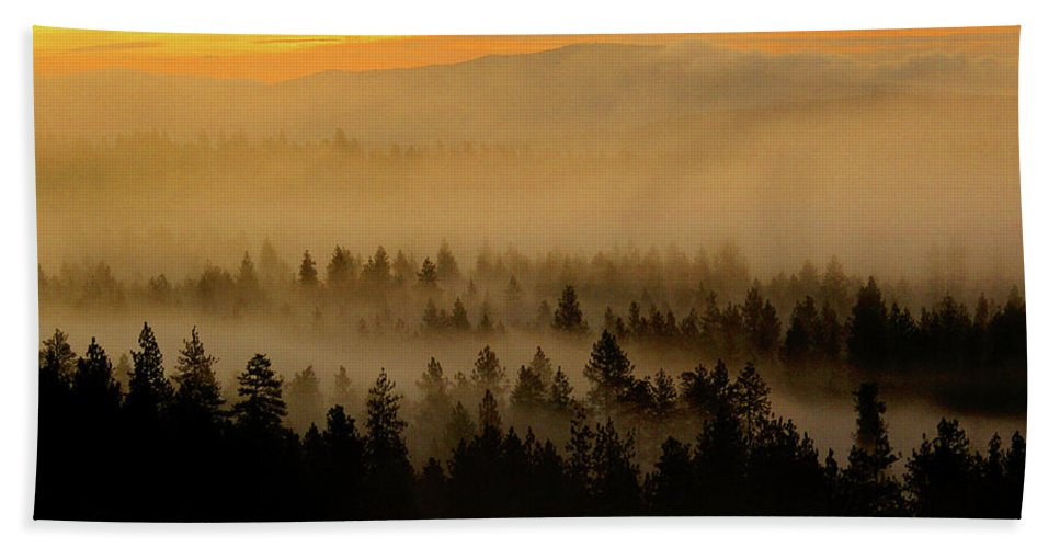 Nature Beach Towel featuring the photograph Misty Sunrise by Ben Upham III