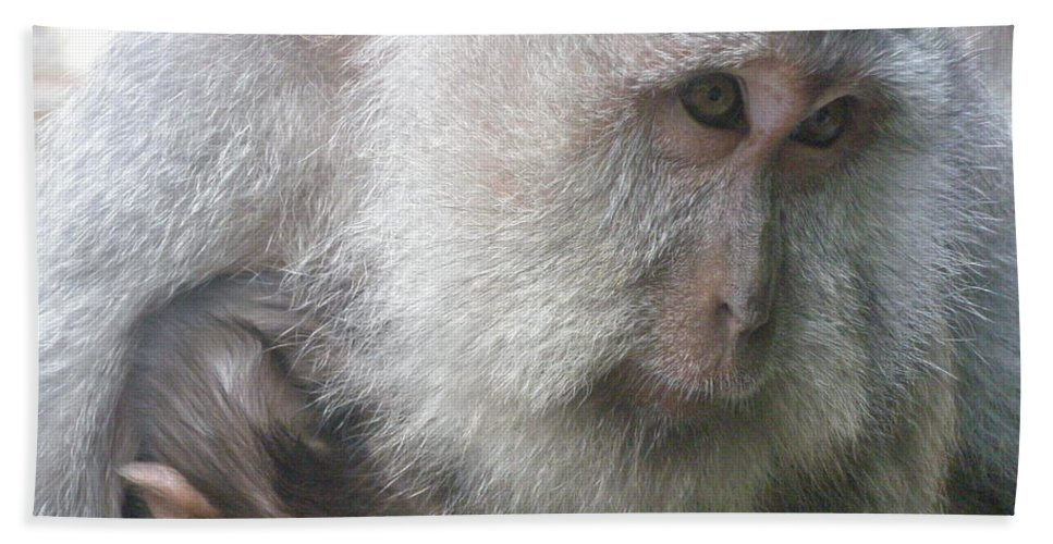 Bali Beach Towel featuring the photograph Monkey Mother 3 by Mark Sellers