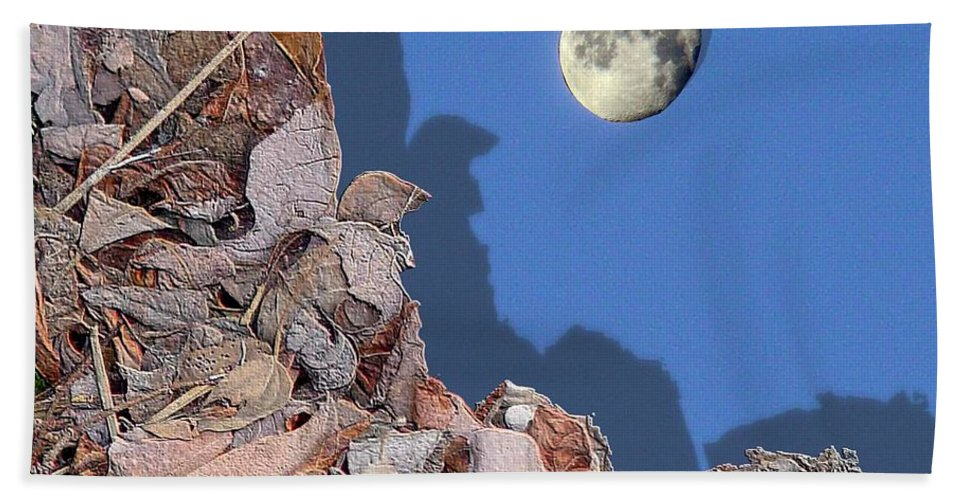 Moon Beach Towel featuring the digital art Moon Shadow by Ron Bissett