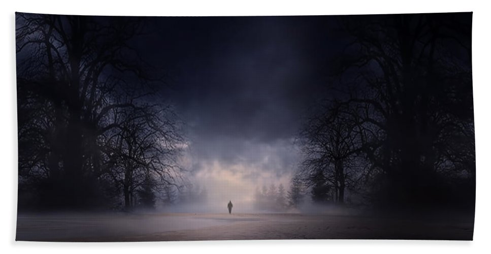 Gloomy Night Beach Towel featuring the photograph Moonlight Journey by Lourry Legarde