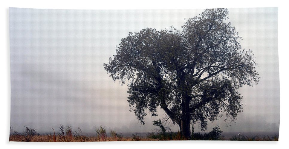 Fog Beach Towel featuring the photograph Morning Fog - The Delta by D'Arcy Evans