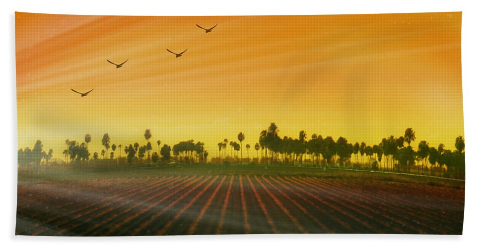 Landscape Beach Towel featuring the photograph Morning Has Broken by Holly Kempe