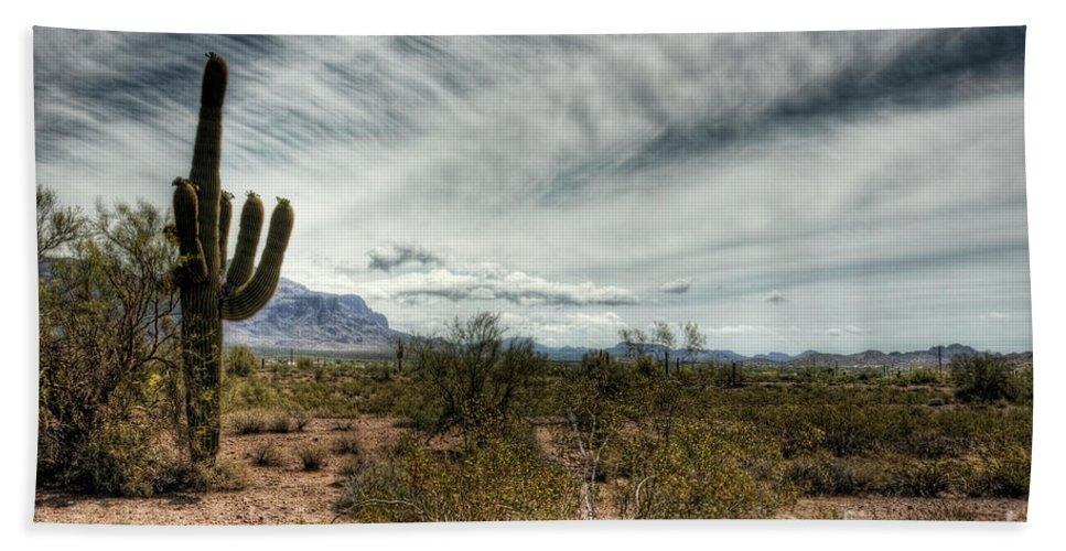 Arizona Beach Towel featuring the photograph Morning In The Desert by Saija Lehtonen