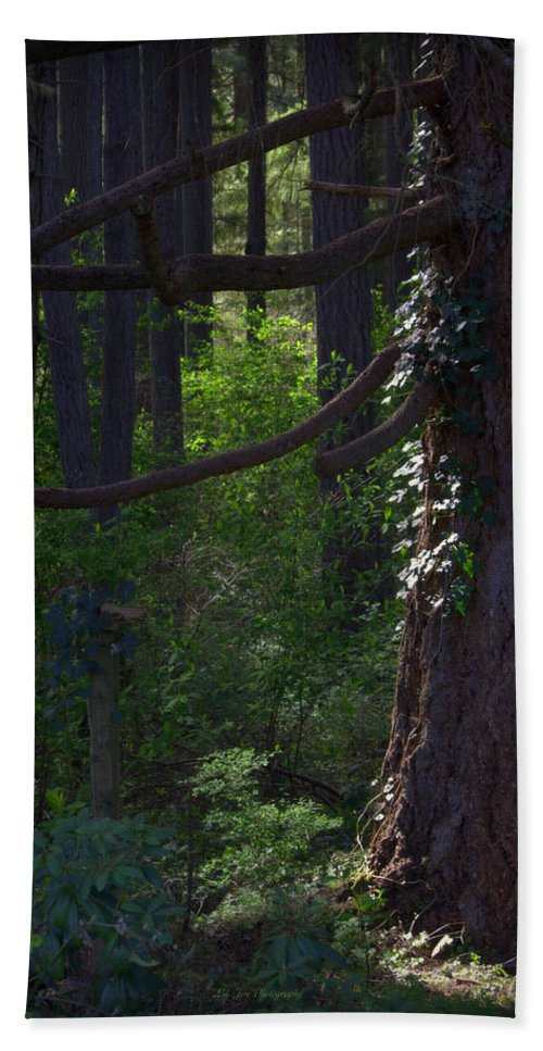 Wood Beach Towel featuring the photograph Morning In The Pacific Northwest by Jeanette C Landstrom