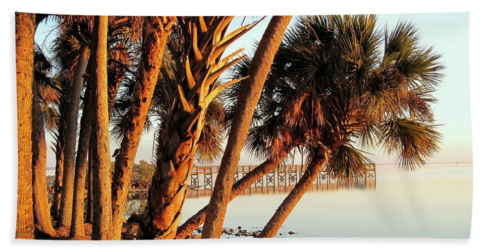Photography Beach Towel featuring the photograph Morning Lights by Susanne Van Hulst