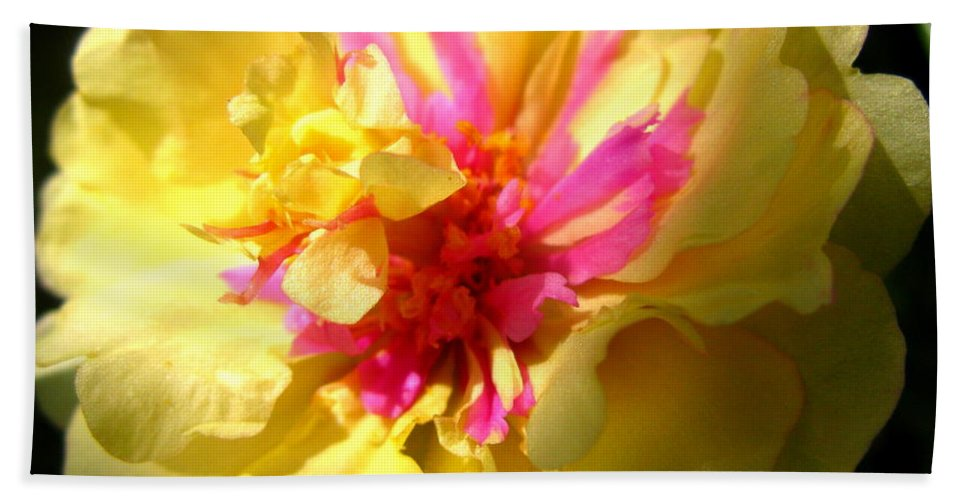 Moss Rose Beach Towel featuring the photograph Moss Rose by Brittany Horton