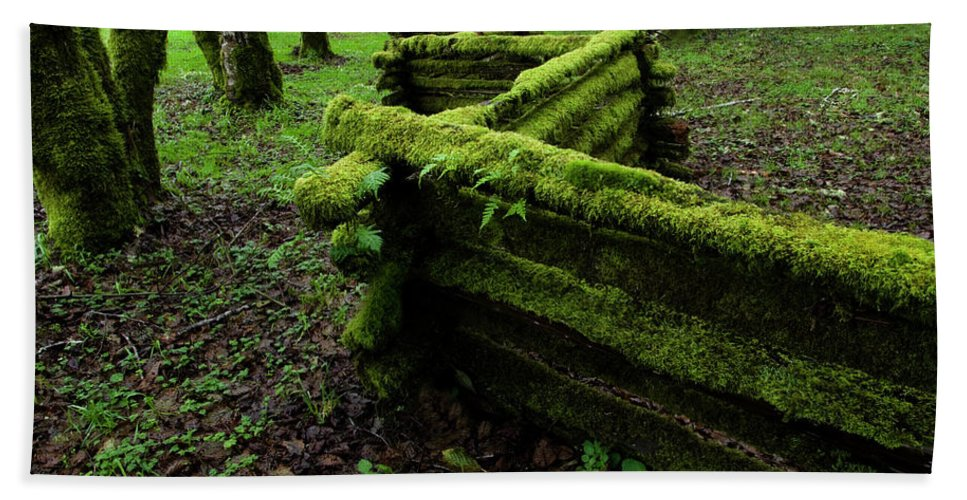Moss Beach Towel featuring the photograph Mossy Fence 5 by Bob Christopher