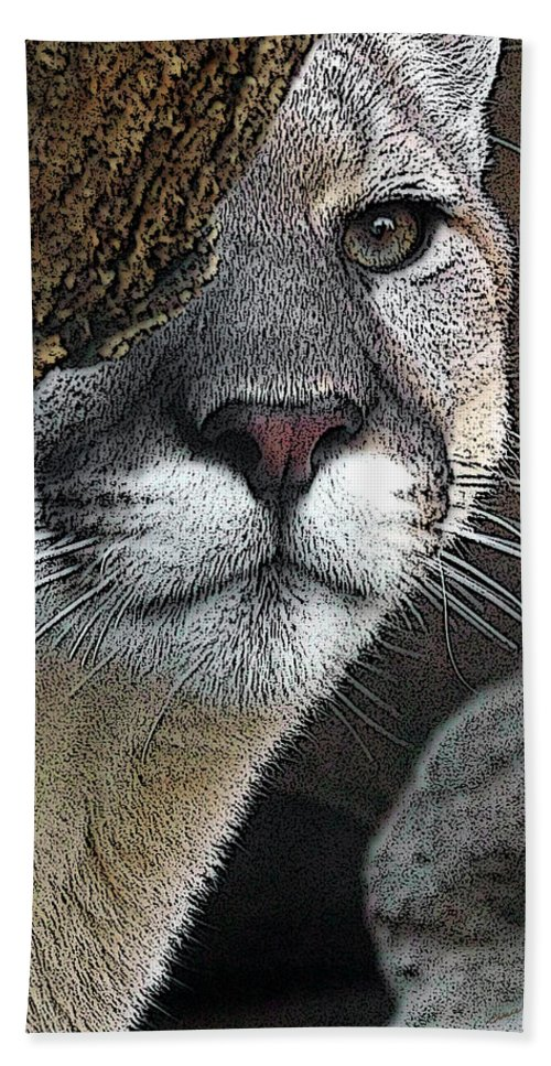 Big Cats Beach Towel featuring the photograph Mountain Lion by Ernie Echols