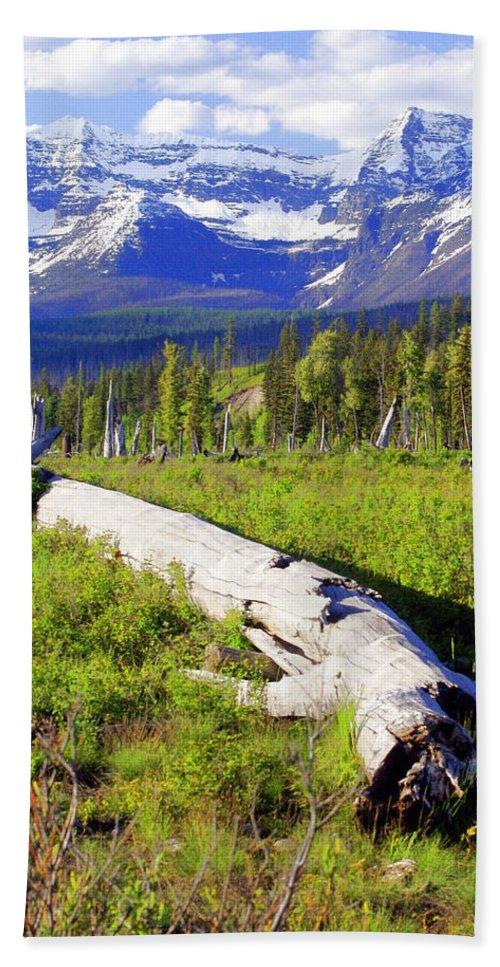 Mountain Beach Towel featuring the photograph Mountain Splendor by Marty Koch