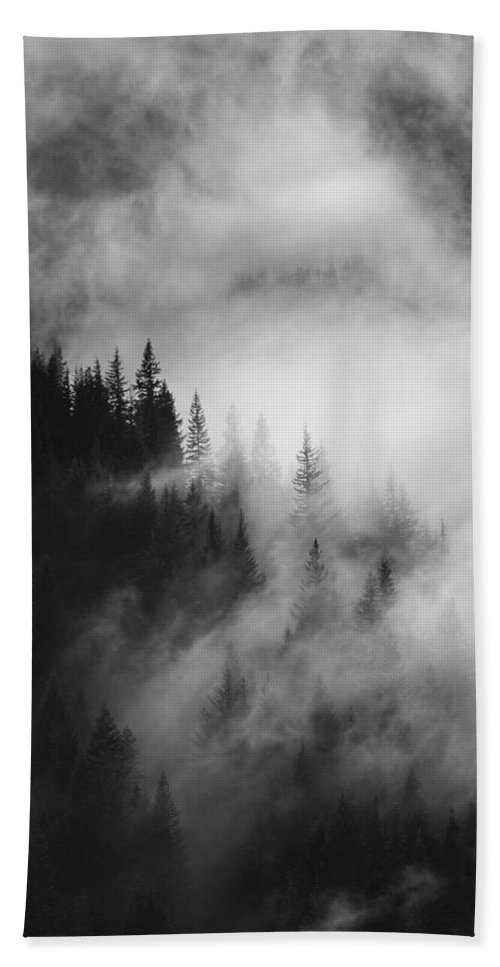Forest Beach Towel featuring the photograph Mountain Whispers by Mike Dawson