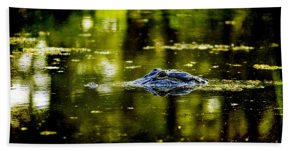 Alligator Beach Towel featuring the photograph Mr. Nice Guy by Scott Pellegrin