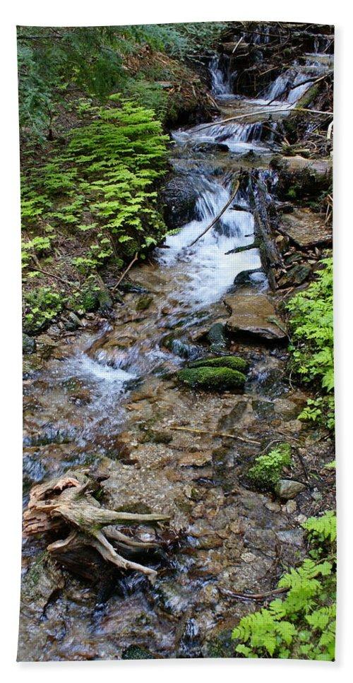Nature Beach Towel featuring the photograph Mt. Spokane Creek 2 by Ben Upham III