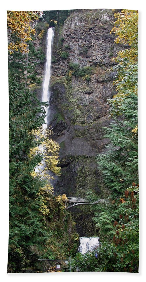 Multnomah Falls Beach Towel featuring the photograph Multnomah Falls - 5 by D'Arcy Evans