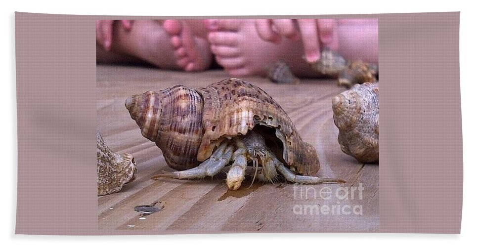 Hermit Crab Beach Towel featuring the photograph Must Vacate by Kim Henderson