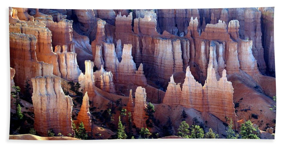 Southwest Art Beach Towel featuring the photograph Muted Bryce by Marty Koch