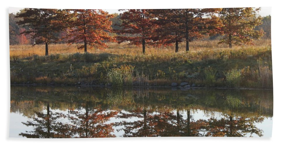 Fall Beach Towel featuring the photograph Muted Fall by Lauri Novak