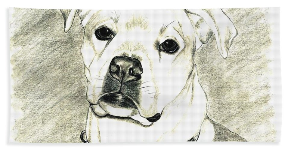 Pet Portrait Beach Towel featuring the drawing My Bella by Joette Snyder