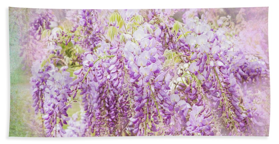Wisteria Beach Towel featuring the photograph My Romance by Marilyn Cornwell