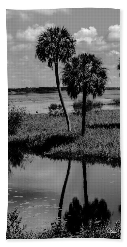 Beach Towel featuring the photograph Myakka River Reflections by Susan Molnar