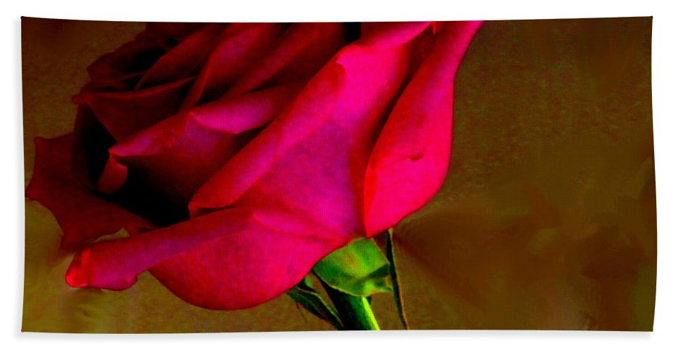 Rose Beach Towel featuring the photograph Mystical Rose by Ian MacDonald