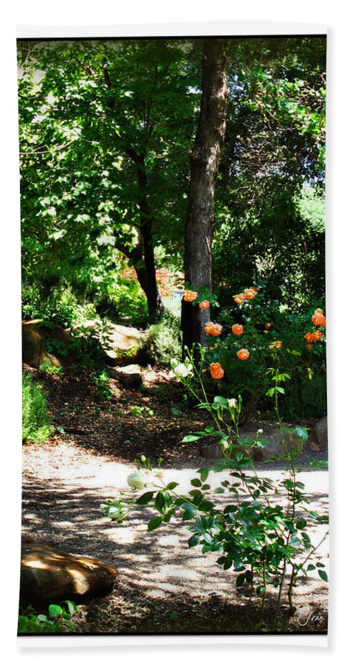 Botanical Beach Towel featuring the photograph Napa Rose Pathway by Joan Minchak
