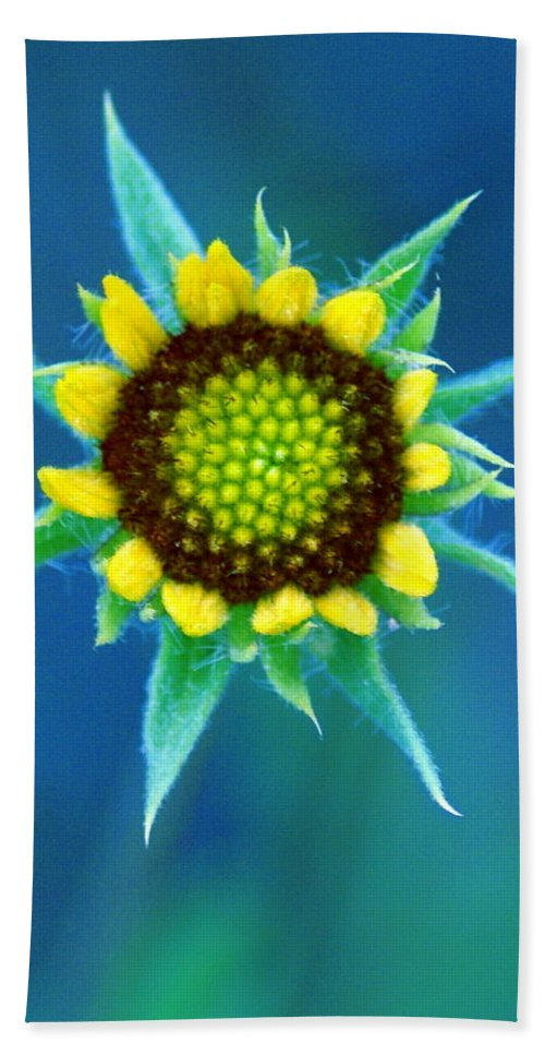 Flowers Beach Towel featuring the photograph Natural Art by Ben Upham III