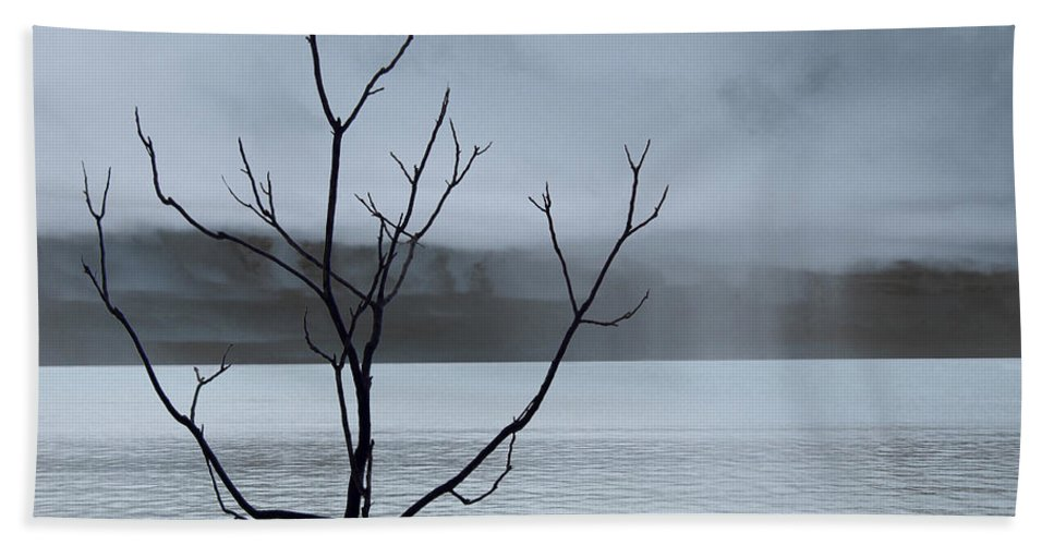 Nature Beach Towel featuring the photograph Nature - The Naked Tree by Munir Alawi