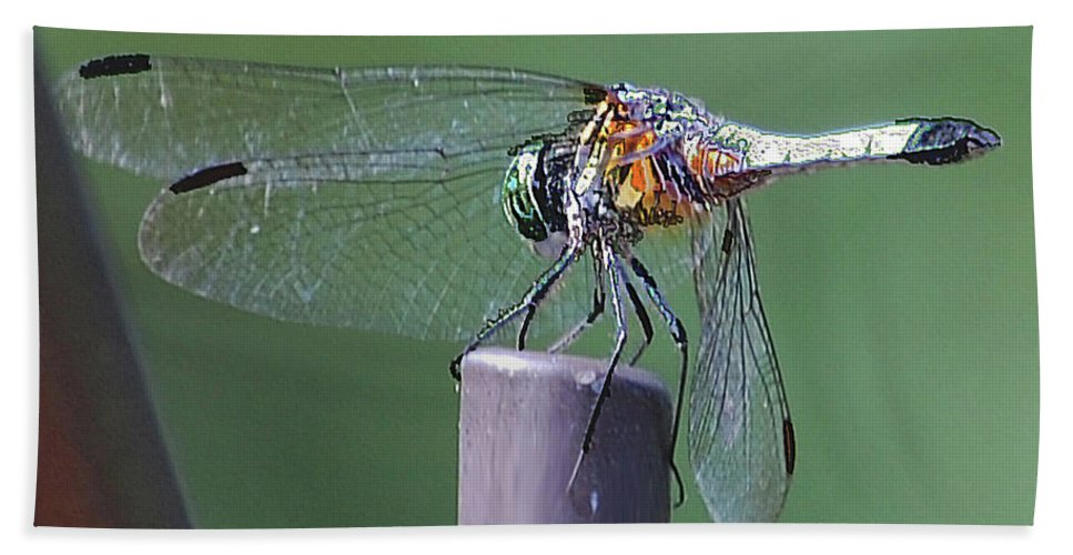 Dragonfly Beach Towel featuring the digital art Neon Dragonfly by DigiArt Diaries by Vicky B Fuller