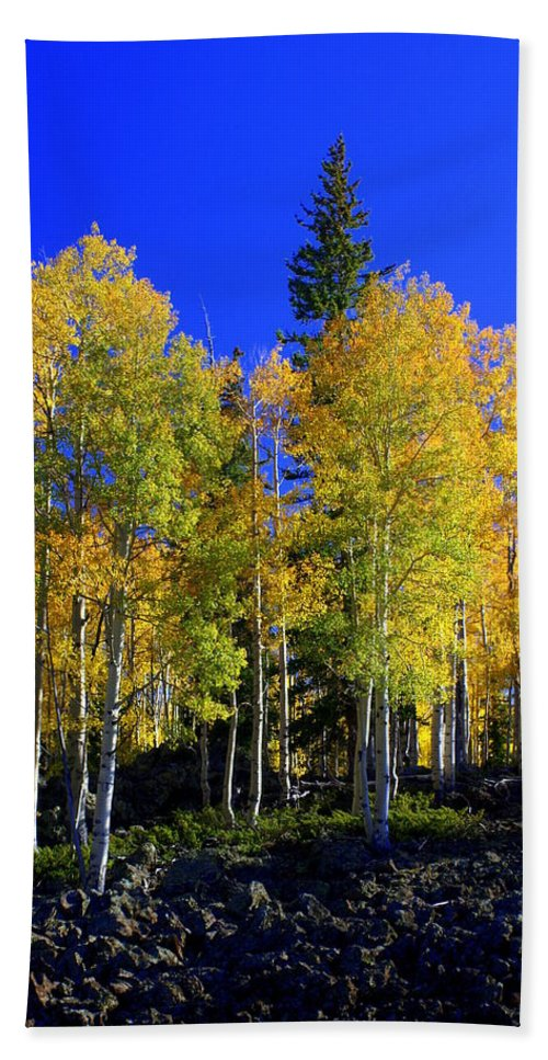 Fall Colors Beach Sheet featuring the photograph Nevada Fall by Marty Koch