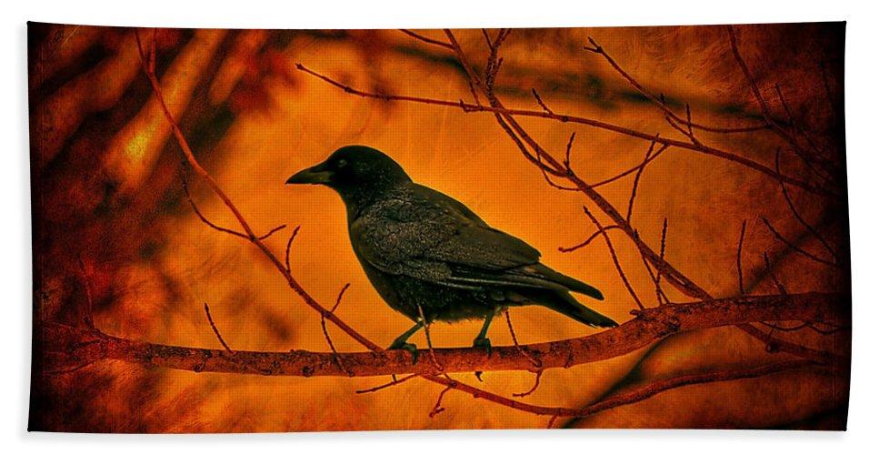 Bird Beach Towel featuring the photograph Night Guard by Evelina Kremsdorf