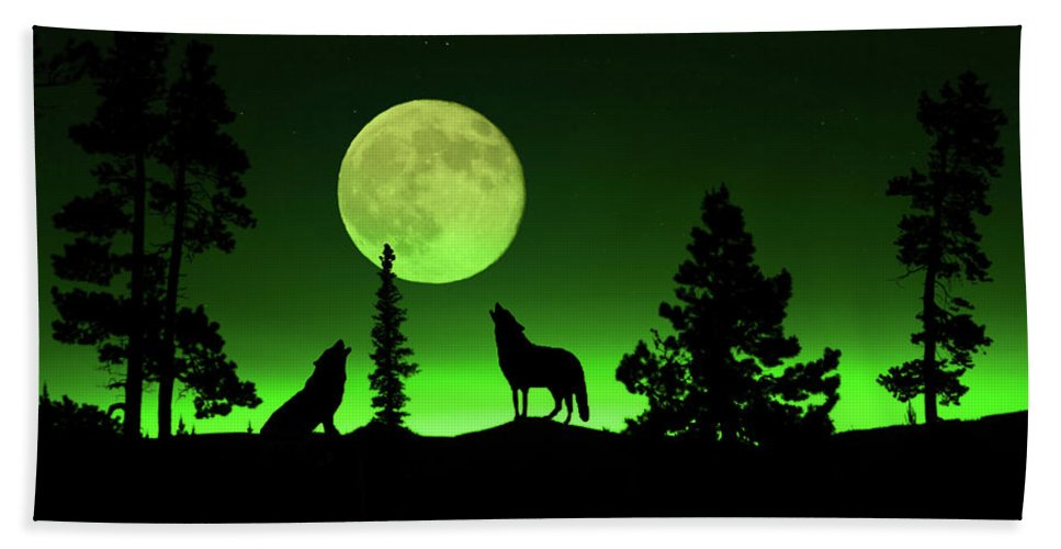 Carnivore Beach Towel featuring the photograph Northern Lights by Shane Bechler