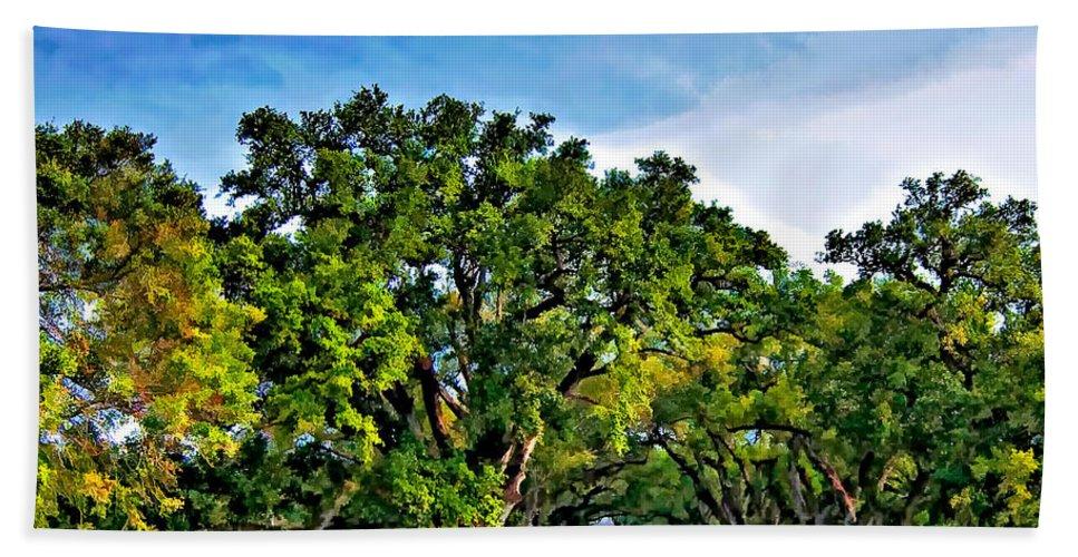 Oak Alley Plantation Beach Towel featuring the photograph Oak Alley Plantation by Steve Harrington