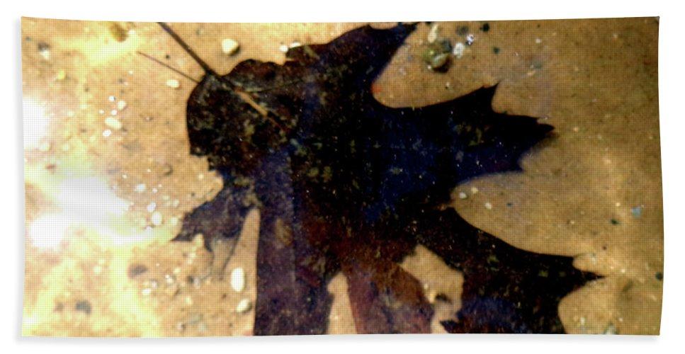 Oak Leaf Beach Towel featuring the photograph Oak Leaf Underwater by Tara Hutton