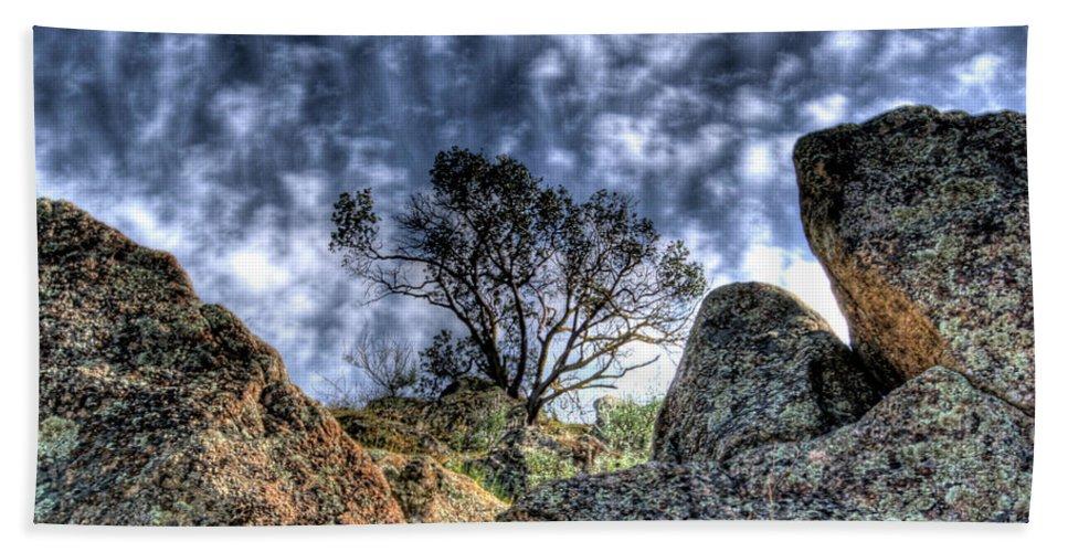 Oak Beach Towel featuring the photograph Oak Tree by Jim And Emily Bush