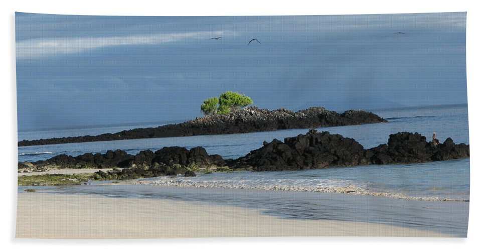 Seascape Beach Towel featuring the photograph Oasis by Sandra Bourret