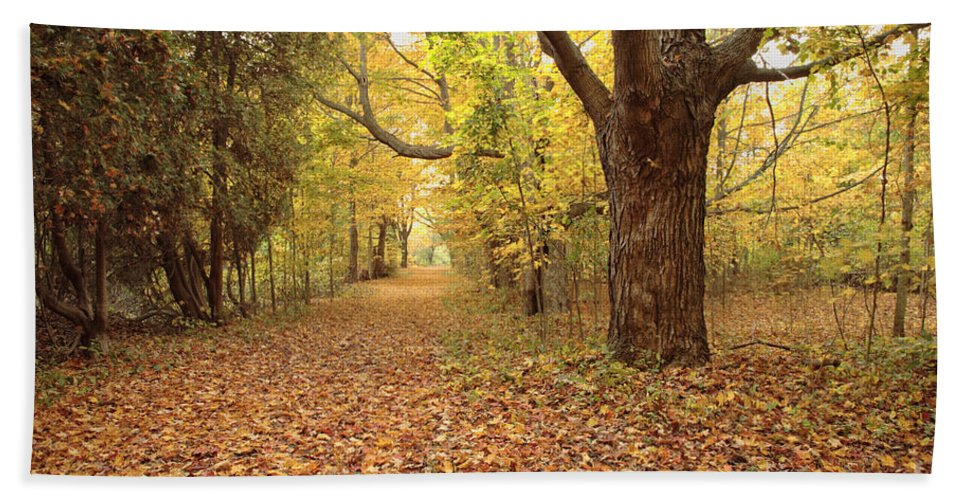 New England Beach Towel featuring the photograph Odiorne Point State Park - Rye New Hampshire by Erin Paul Donovan