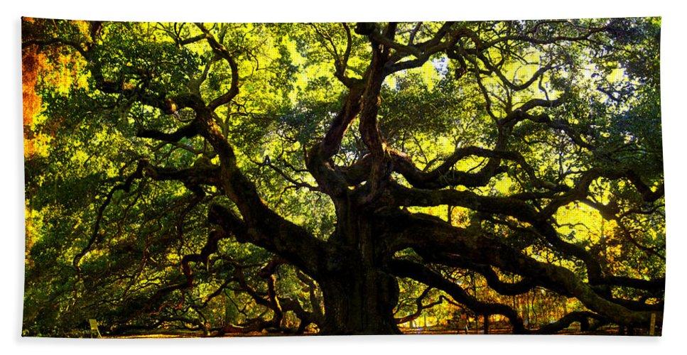 Angel Oak Beach Towel featuring the photograph Old old Angel Oak in Charleston by Susanne Van Hulst