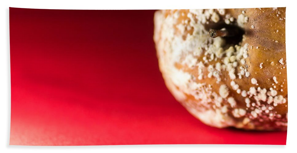 Dead Apple Beach Towel featuring the photograph Old Rotting Apple With Fruit-rot On Red Background by John Williams
