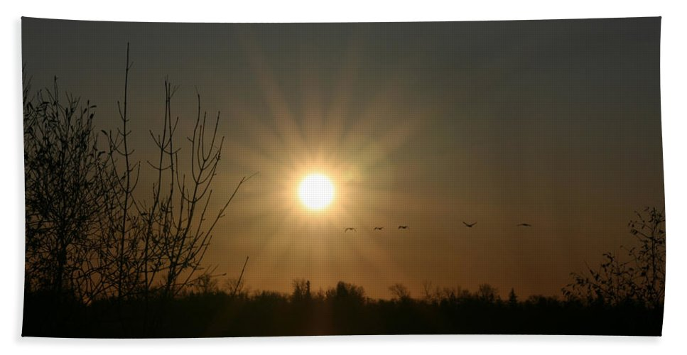 Geese Water Lake Ice Trees Nature Sunrise Sun Cold Morning Ducks Birds Beach Towel featuring the photograph On Frozen Pond by Andrea Lawrence
