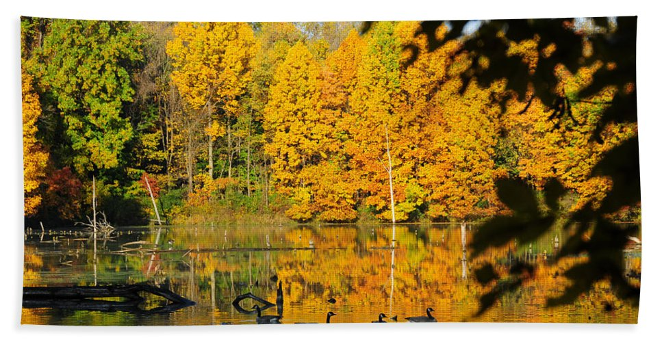 Geese Beach Towel featuring the photograph On Golden Pond 2 by David Arment