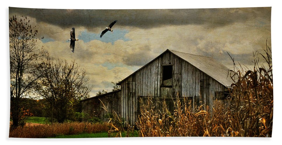 Barn Beach Towel featuring the photograph On The Wings Of Change by Lois Bryan