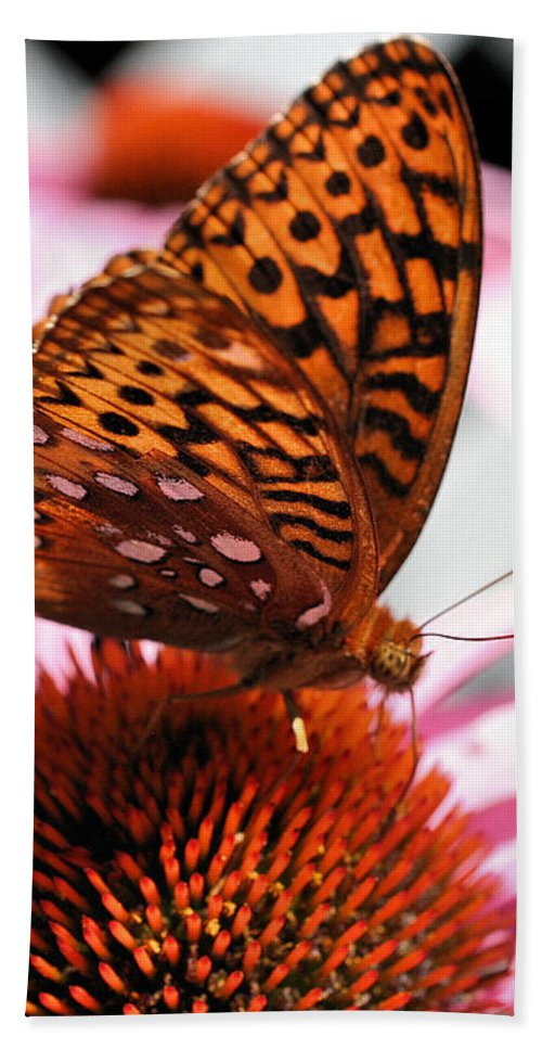 Butterfly Beach Towel featuring the photograph Orange Butterfly by Smilin Eyes Treasures