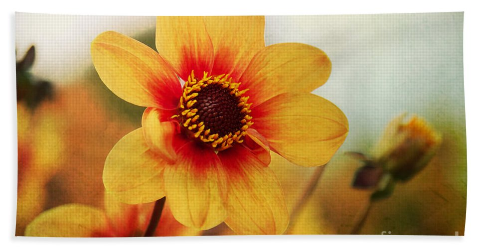 Autumn Beach Towel featuring the photograph Orange Dahlia by Angela Doelling AD DESIGN Photo and PhotoArt