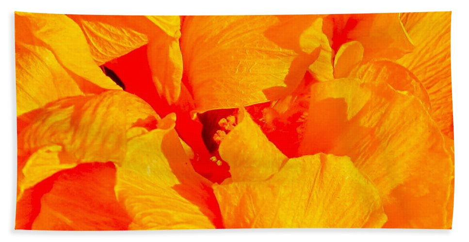 Photograph Of Orange Flower Beach Towel featuring the photograph Orange Frills by Gwyn Newcombe