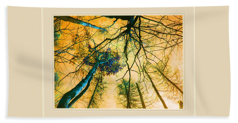 Tree Tops From Ground Beach Towel featuring the photograph Orange Sky Tree Tops by Felipe Adan Lerma