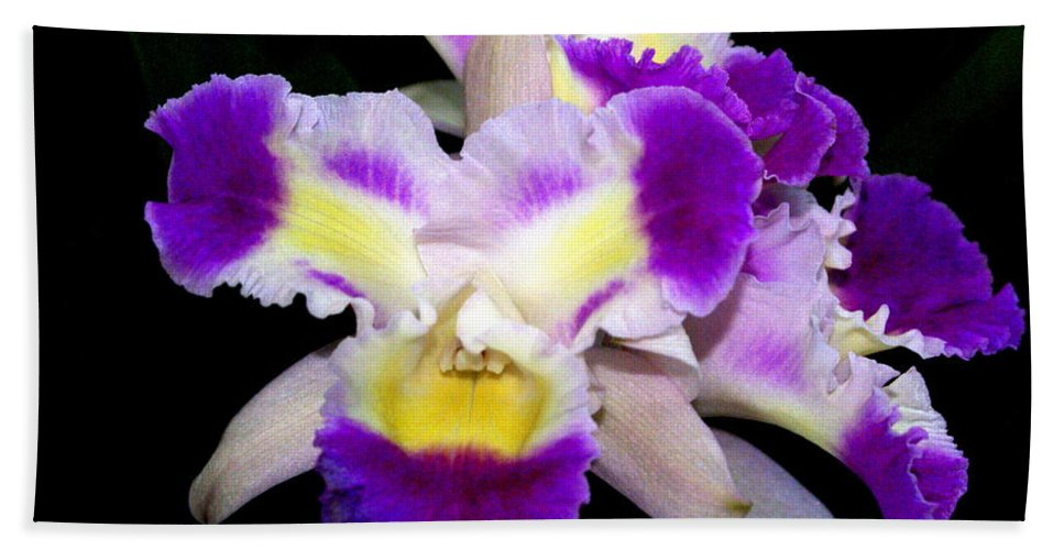 Flower Beach Towel featuring the photograph Orchid 13 by Marty Koch