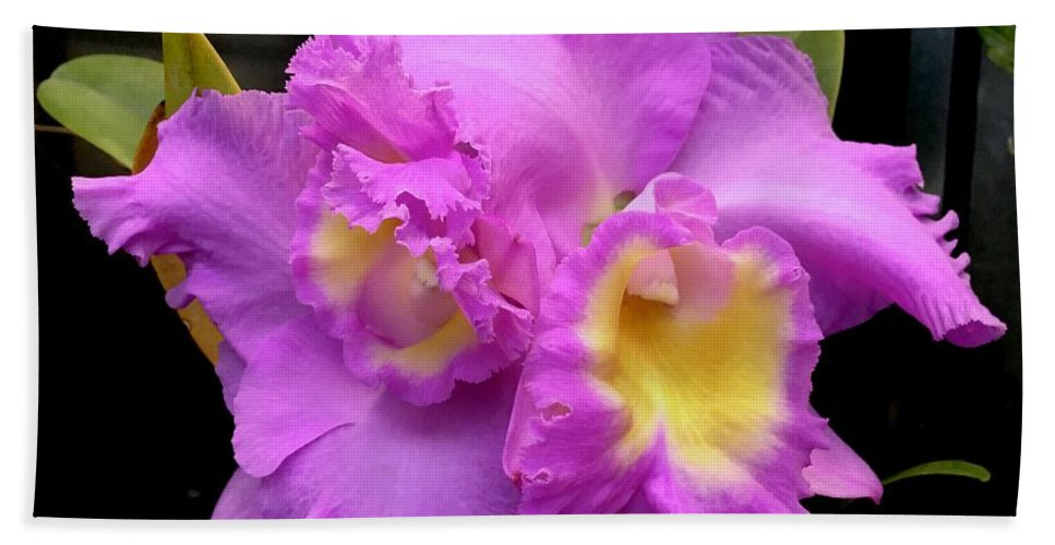 Art Beach Towel featuring the photograph Orchids In Fuchsia by Jeannie Rhode