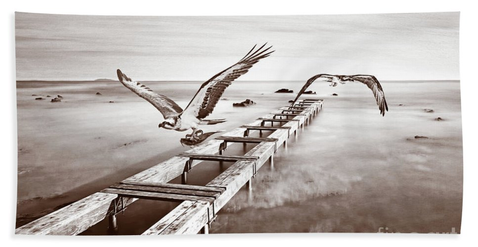 Osprey Beach Towel featuring the photograph Osprey On The Move Bw by Laura D Young