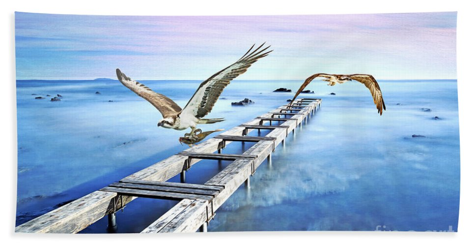 Osprey Beach Towel featuring the photograph Osprey On The Move by Laura D Young